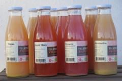 Forskellige flasker æblemost